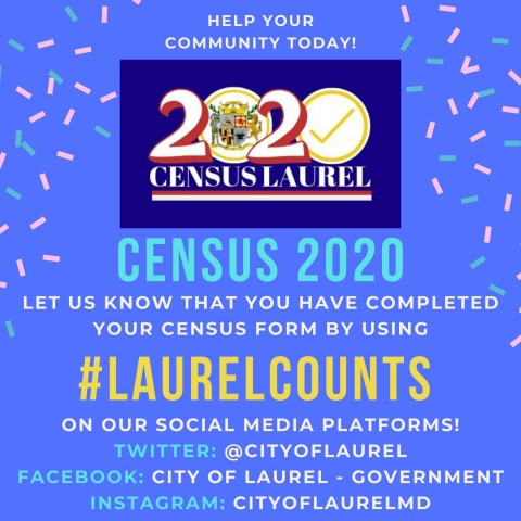 laurel_counts.jpg