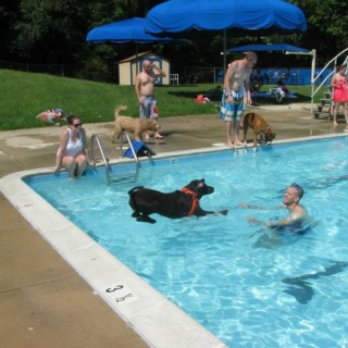 Featured events city of laurel maryland for Laurel municipal swimming pool